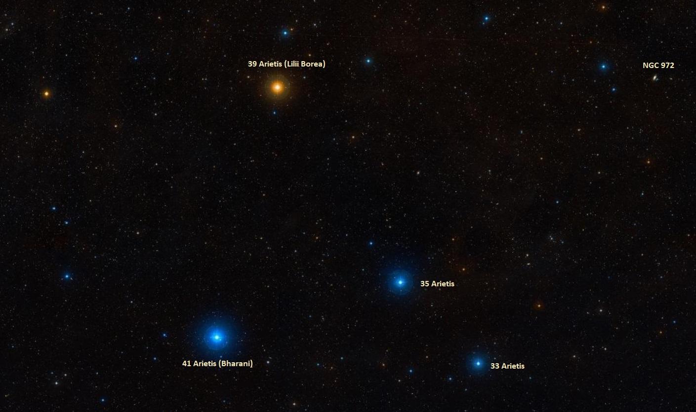 musca borealis,lilium constellation