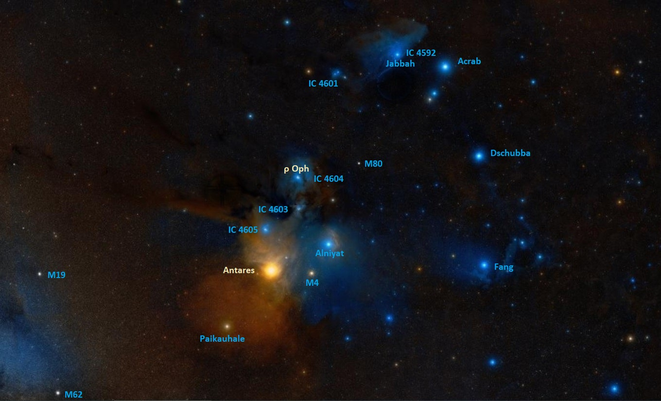 how to find rho ophiuchi,where is rho ophiuchi